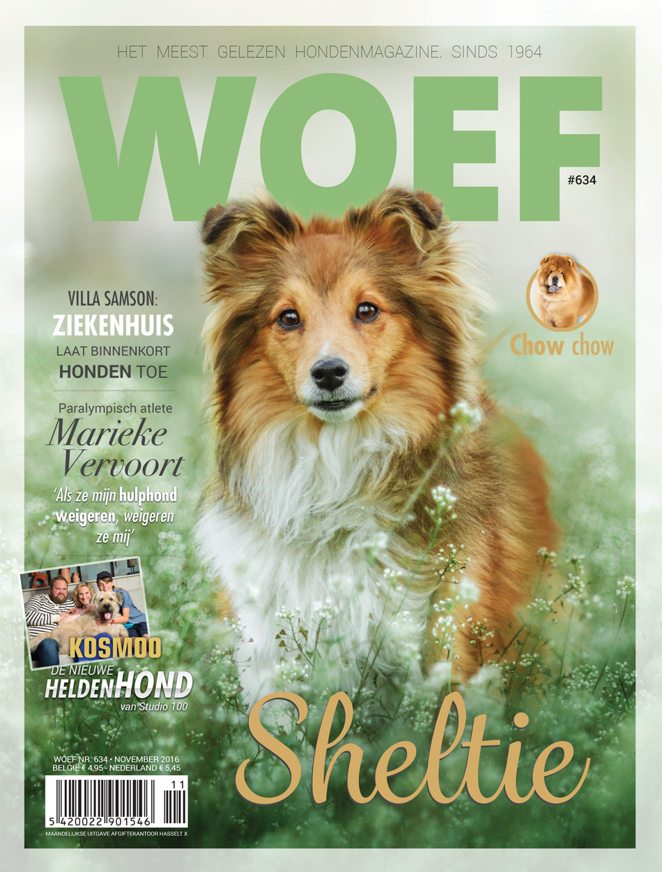 cover woef november 2016