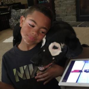 hond vitiligo