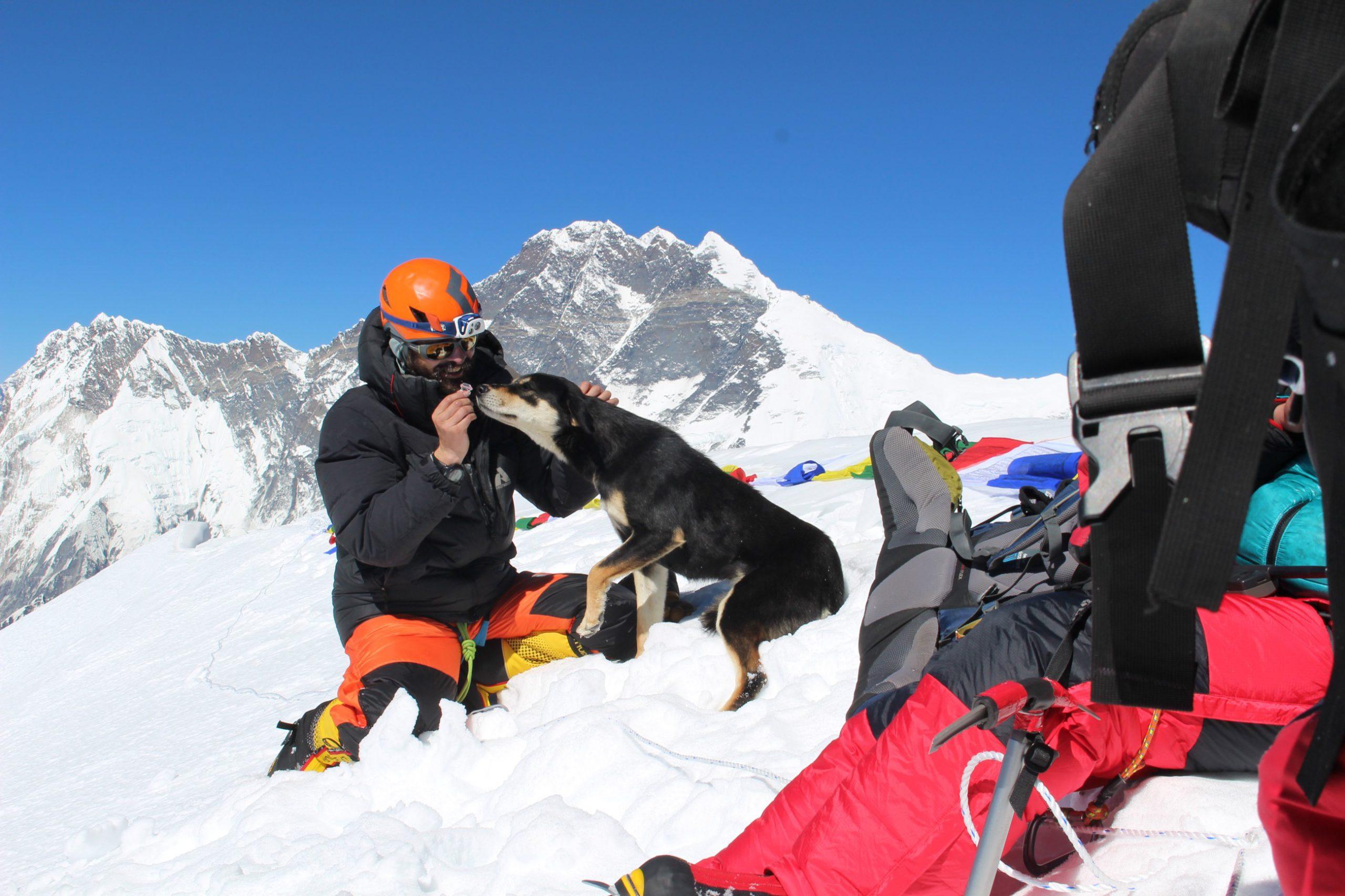 Straathond beklimt 7.000-meter hoge berg